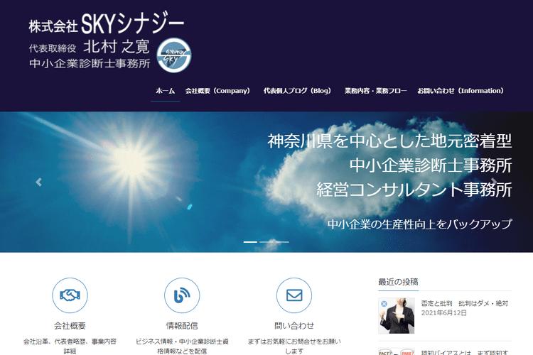 株式会社 SKYシナジー