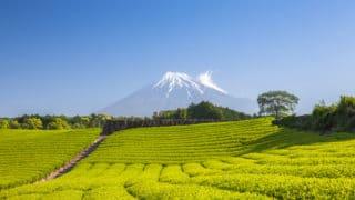 静岡県の資金調達に強い専門家 融資や資金調達に強い専門家紹介 3の画像