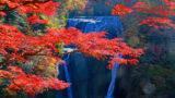 茨城県の資金調達に強い専門家 茨城で融資や資金調達に強い専門家を紹介 7の画像