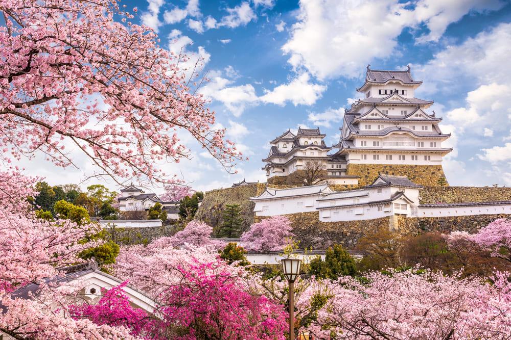 兵庫県の資金調達に強い専門家 兵庫で融資や資金調達に強い専門家を紹介