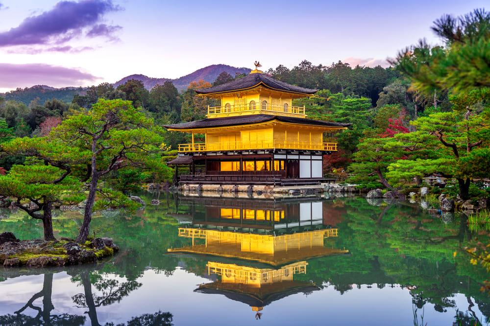 京都府の資金調達に強い専門家 京都で融資や資金調達に強い専門家を紹介